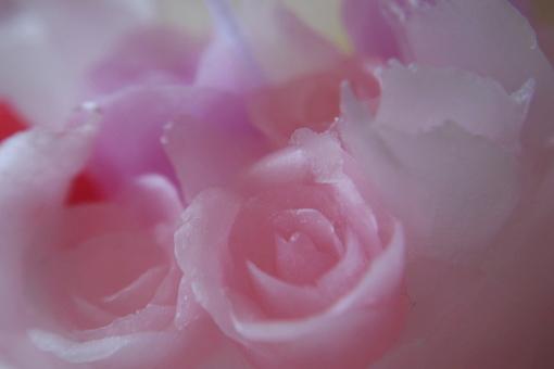 画像4: 歓びの季節*・。゜ PINK