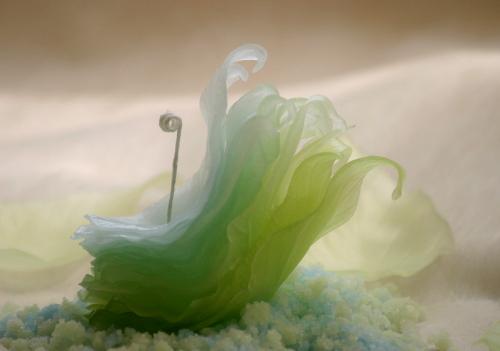 画像3: レムリアの風 -ひかりのきせつ
