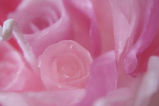 画像3: Heart of Roses